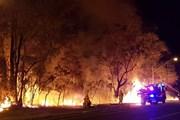 Trên 30 vụ cháy rừng xảy ra trong một ngày tại Thụy Điển