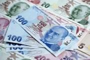 Qatar tăng cường hỗ trợ Thổ Nhĩ Kỳ đối phó khủng hoảng tài chính