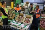 Phát huy lợi thế địa phương trong tái cơ cấu ngành nông nghiệp