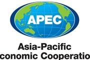 Các nền kinh tế APEC hướng tới cải cách cấu trúc khu vực