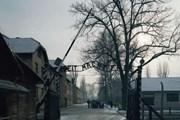 """""""Trại tử thần"""" Auschwitz-Birkenau nhắc nhở trách nhiệm của nước Đức"""