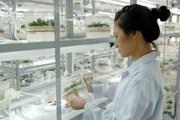 Hơn 140 công nghệ sẽ được trình diễn tại TechConnect Việt - Lào