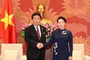 Đoàn đại biểu Đảng Dân tiến Nhật Bản thăm và làm việc tại Việt Nam