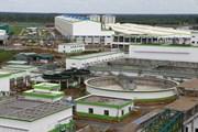 Nhà máy Giấy Lee&Man hoạt động chính thức từ cuối tháng 10