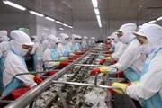 Hải sản Việt tìm cách khắc phục ''thẻ vàng'' ở thị trường EU
