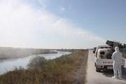 Dịch cúm gia cầm H5N6 lại bùng phát tại Hàn Quốc