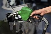Giá dầu thị trường thế giới chấm dứt bốn tuần tăng giá liên tiếp