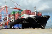 Bà Rịa-Vũng Tàu chính thức đưa vào hoạt động cảng quốc tế Thị Vải
