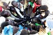 224 triệu người trên toàn châu Phi đang bị suy dinh dưỡng
