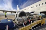 Tạm giữ nhân viên sân bay để làm rõ việc trộm hành lý của khách