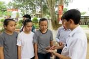 Bảy học sinh lớp 1 ngộ độc do ăn hạt ngô đồng rơi trên sân trường