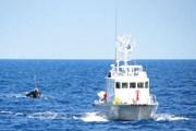 Nhật Bản tiếp tục trục xuất ngư dân Triều Tiên được cứu hộ