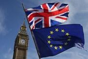 Nội bộ Anh mâu thuẫn về vấn đề ở lại liên minh thuế quan EU