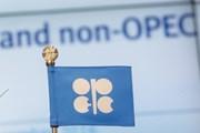 Giá dầu trên thị trường thế giới tăng trước thềm hội nghị OPEC