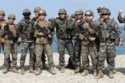 Phản ứng sau khi Mỹ-Hàn ra thông báo ngừng tập trận chung