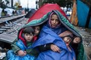 OECD: Cuộc khủng hoảng người di cư năm 2017 tạm lắng dịu