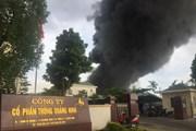 Hỏa hoạn bùng phát tại kho chứa nhựa Công ty Cổ phần thông Quảng Ninh