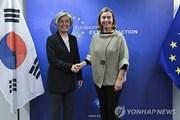 Hàn Quốc-EU cam kết cùng nỗ lực vì hòa bình trên Bán đảo Triều Tiên
