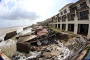 Xói lở dữ dội ở bờ biển Nam miền Trung: Nhiều hậu quả nặng nề