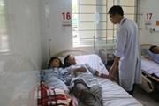 Hà Tĩnh: Ăn nấm lạ, bốn người trong một gia đình nhập viện