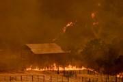 Mỹ: Diện tích cháy rừng ở bang California tăng gần gấp đôi
