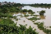 Mực nước trên sông Hồng tại Hà Nội sẽ đạt đỉnh vào trưa nay