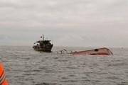 Khẩn trưởng xác minh việc tàu cá bị đâm chìm trên biển Vũng Tàu