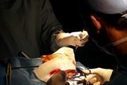 Vừa tham gia phẫu thuật, bác sỹ hiến máu hiếm cứu sống bệnh nhân