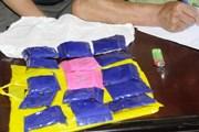 Bắt hai đối tượng vận chuyển trái phép chất ma túy tại Lóng Luông
