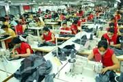 FTA giữa Việt Nam-EAEU đưa kim ngạch thương mại 2 chiều tăng nhanh