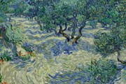 Phát hiện mới về thói quen sáng tác của danh họa Van Gogh