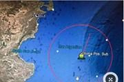 Chính phủ Argentina đẩy mạnh tìm kiếm tàu ngầm mất liên lạc
