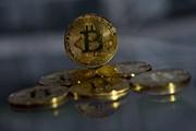 """Giá đồng bitcoin tiếp tục lập """"đỉnh"""" sau 2 ngày hợp đồng được ký"""
