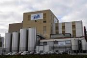 Hong Kong thu hồi 3 sản phẩm sữa công thức của Tập đoàn Lactalis