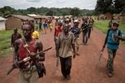 Mỹ-Anh-Pháp cần thông tin về kế hoạch của Nga cấp vũ khí cho Trung Phi