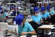 Công nghiệp và xây dựng được dự báo có mức tăng trưởng cao nhất quý 1
