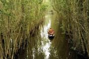 Công bố điều chỉnh quy hoạch xây dựng vùng Đồng bằng sông Cửu Long