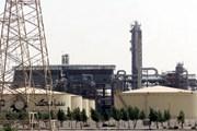 OPEC bất đồng trước cuộc họp về chính sách năng lượng