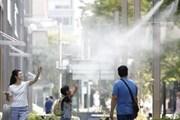 Số cuộc gọi khẩn cấp tăng kỷ lục tại Nhật Bản do nắng nóng