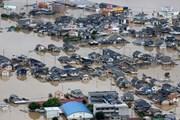 Nhật Bản: Mưa lũ gây thiệt hại hơn 1 tỷ USD cho nông ngư nghiệp