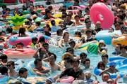 Cảnh báo nắng nóng tiếp tục kéo dài ở Nhật Bản, nhiều người tử vong