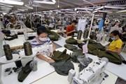 Kim ngạch xuất nhập khẩu Việt Nam-Séc đạt hơn 464 triệu USD