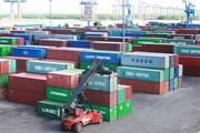 Cảng Hải Phòng có hơn 3.500 container phế liệu tồn đọng quá hạn