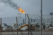 Ấn Độ: Mỹ cấm các nước nhập khẩu dầu từ Iran là bất khả thi