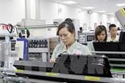 ILO lên tiếng về vụ việc Samsung bị tố xử tệ với công nhân Việt