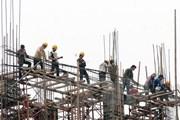 Mới chỉ 4 trong số gần 9.000 vụ tai nạn lao động bị khởi tố