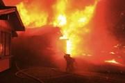 Những hình ảnh kinh hoàng trong trận bão lửa tràn qua California