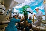 Nhà máy Đạm Cà Mau chính thức hoàn thành bảo dưỡng tổng thể