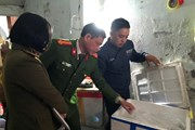 Hà Nội: Phát hiện cơ sở bơm tạp chất vào tôm để thu lợi bất chính