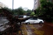 Hà Nội: Bão số 3 làm nhiều nhà bị tốc mái, 3 người bị thương